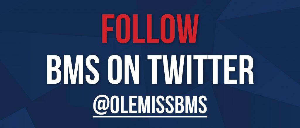 BMS Twitter Button