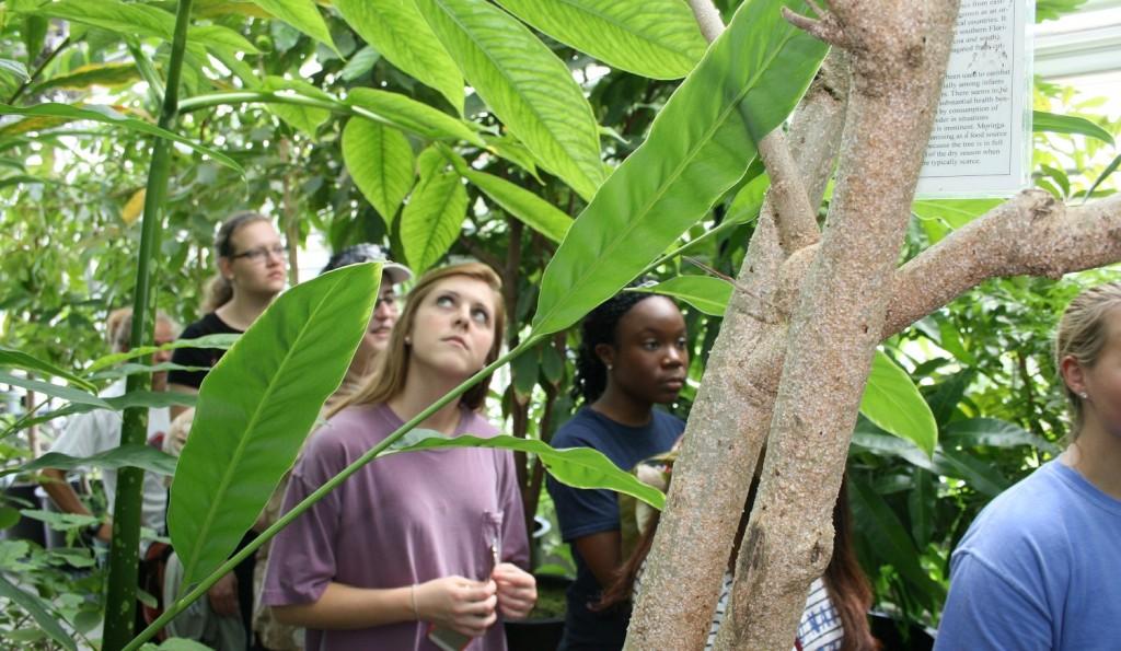 Visit to Maynard W. Quimby Medicinal Plant Garden