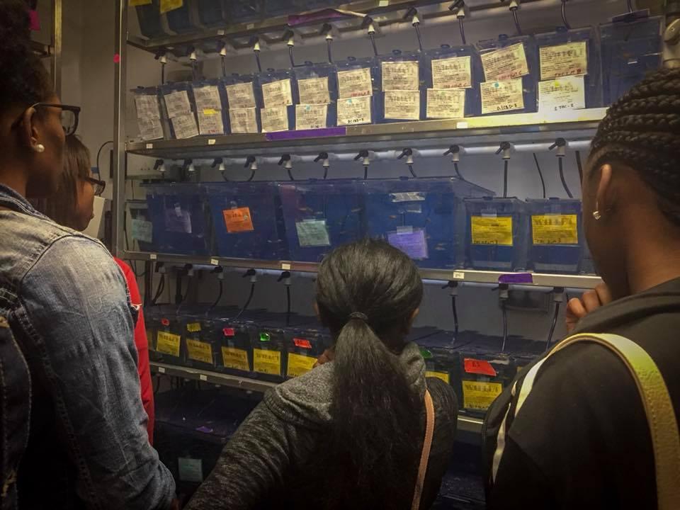 TriCounty Fish lab