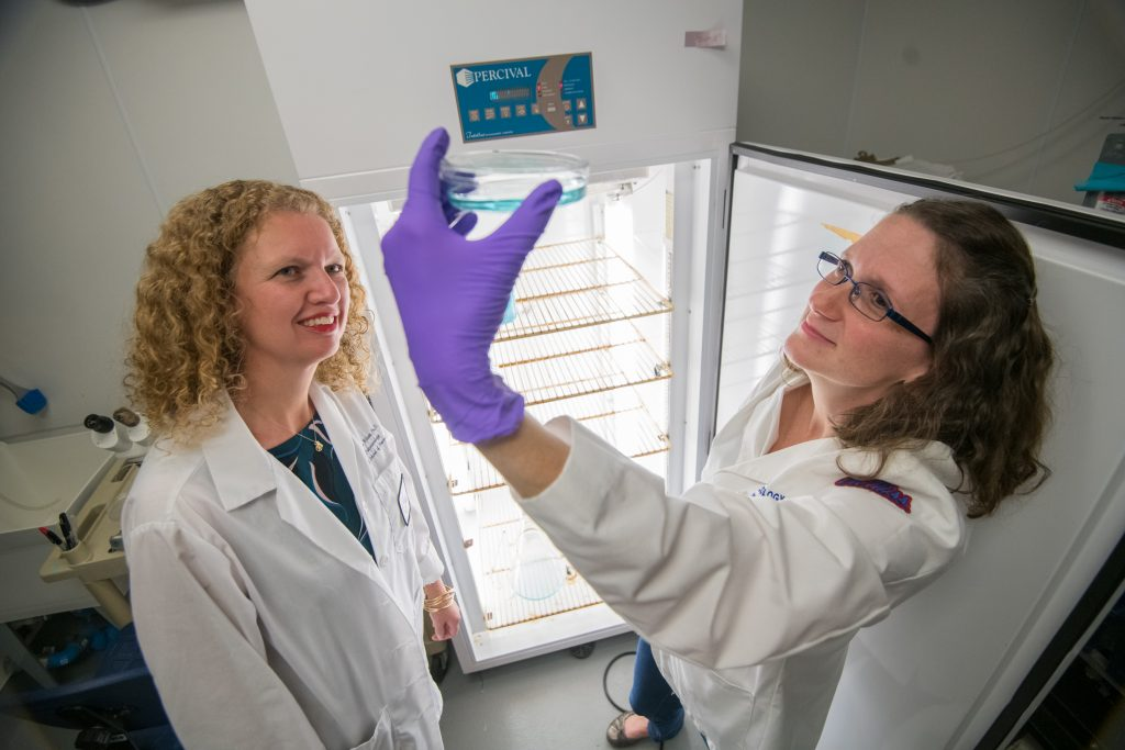 BioMolecular labs.  Photo by Kevin Bain/Ole Miss Digital Imaging Services.
