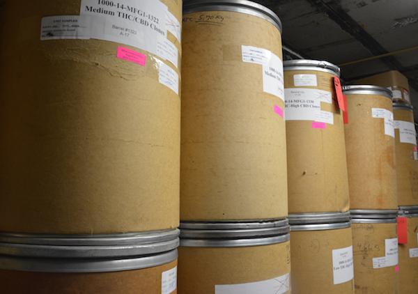 Marijuana stored in barrells at the University of Mississippi