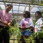 CSI Tour Medicinal Plant Garden