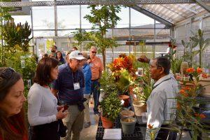 Medicinal plant garden tour