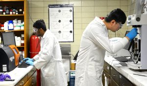 Graduate student using lab instruments
