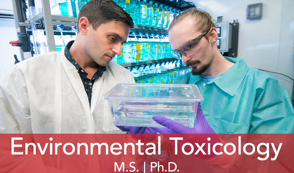 "Two male students look at fish in a plastic container. Text ""Environmental Toxicology"""
